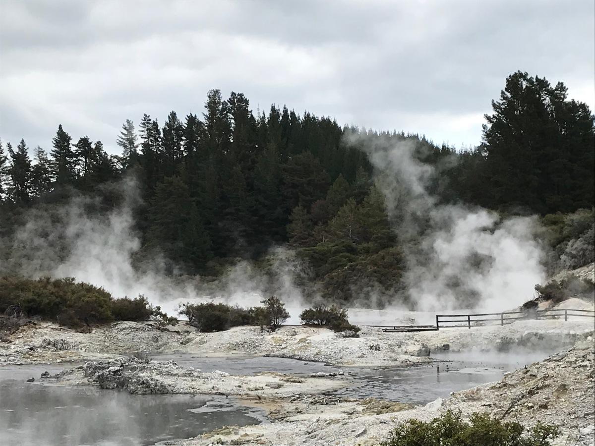 Hell's Gate in Rotorua